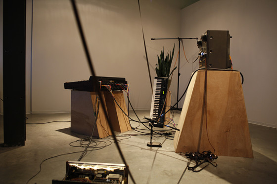Tape Loop_Recording for Sansevieria Raul Romero